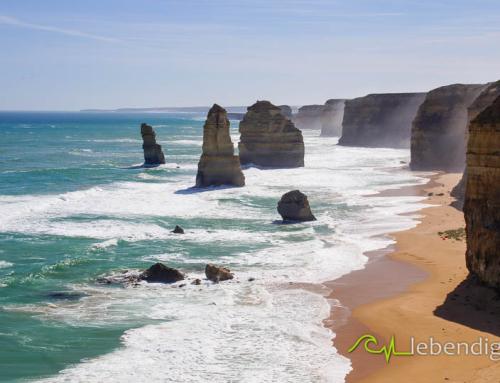 portfolio kitebirds kiteschule australien 18
